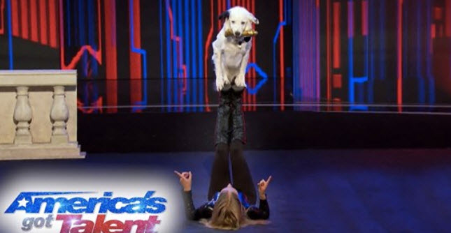 Incredible Dog Training Team Going to the 'AGT' Finals